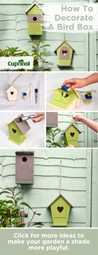 How To Decorate A Bird-Box