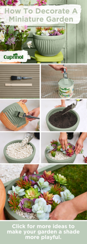 How To Create A No-Kill Garden